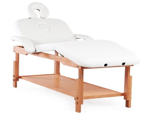 Healthline Massage Products Professional Massage Table